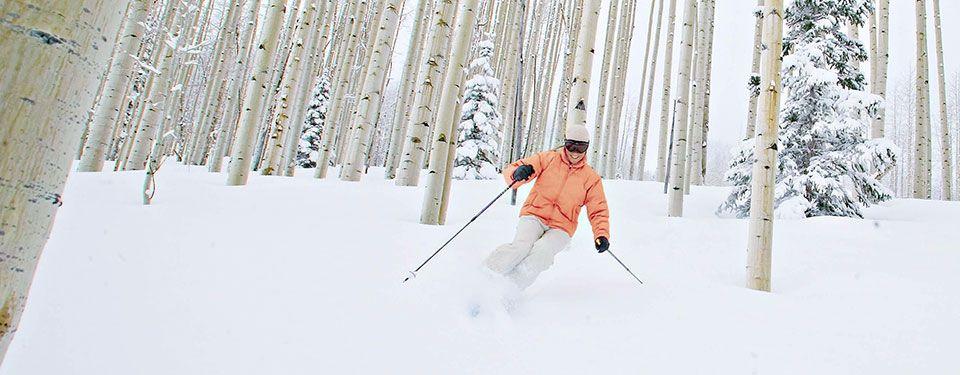 Skiing through Aspens